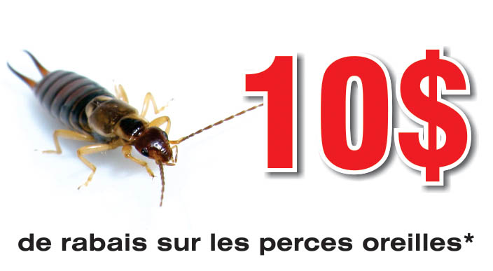 Coupons Rabais Extermination Perces-oreilles | Guet-Apens Extermination